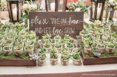 Jenny Adams Mallard Island Wedding party Here is a special idea for wedding mementos – declare them with a hand painted wood signal! No real matter what kind of favors you select, this will be a large hit! Succulent Party Favors, Succulent Wedding Favors, Rustic Wedding Favors, Personalized Wedding Favors, Wedding Favors For Guests, Wedding Gifts, Wedding Ideas, Wedding Decorations, Wedding Tokens