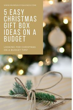 5 Easy Christmas Gift Box Ideas on a Budget to suit all finances and make Christmas special. Diy Christmas Baskets, Christmas On A Budget, Christmas Gift Box, Simple Christmas, Low Fat Cookies, Basic Cookies, How To Make Cookies, Presents For Dad, Gifts For Mum