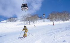 Niseko Annupuri Ski Resort, Hokkaido - nations Winter Olympics held here in Sapporo and the world famous Sapporo Snow Festival staged every February Ski And Snowboard, Snowboarding, Skiing, Web Japan, Virgin Atlantic, Ski Holidays, Ski Lift, Sapporo, Winter Olympics