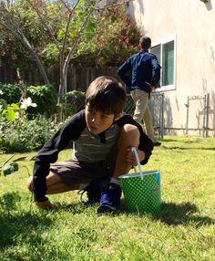 Egg hunt 2015