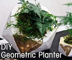 "How to make your own ""concrete"" planter. Includes geometric template!"