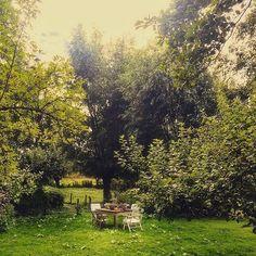 #rottigemeente #photo #fotografie #friesland #garden #tuin#tuininspiratie…