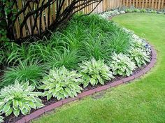 Use those plants! Seriously! Perennials make awesome borders, like these Hostas and Daylilies. Aren't a fan? There are plenty of both tall and small plants that are sure to take your fancy as a colorful and living border idea.