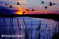 sunset at the pond | Chipz' Quipz: Goose Pond Sunset - Linton, Indiana