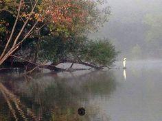 Green River Lake - KY