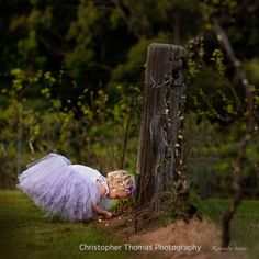 Flowergirl, Flaxton Gardens - Maleny and Brisbane Wedding Photographer Christopher Thomas Photography Photography Awards, Wedding Photography, Wedding Locations, Wedding Venues, Portrait Photographers, Portraits, Vineyard Wedding, Professional Photography, Purple Wedding