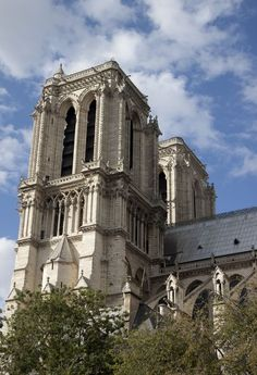 Notre Dame Photo by Ivete Basso -- National Geographic Your Shot