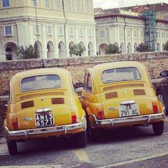 Twins! Fiat 500 #classiccars #fiat500 #twins