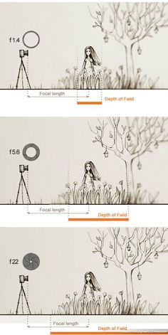 Fabulous tutorial about aperture, ISO and Exposure! Photography tips. Nordic360.