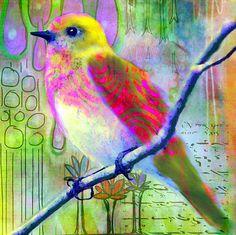 birds in journals