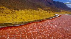 Lake Natron, Tanzania  タンザニア北部のナトロン湖の写真集。流出河川のない湖で、塩分濃度が高く独特のバクテリアが生育し、水が濃い赤色を呈する。水面には結晶が析出し、幾何学的な模様を形成。フラミンゴの生育地でもある。環境が厳しく天敵が侵入できないことが理由。  https://twitter.com/ogugeo/status/329159673406177280