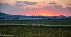 Hay it's sunset #qld #visitqld #nobby #sunset #skyporn #reds #rural #rural_love #ruralqld @foto_adventures  #sunsetseries