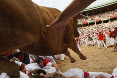 Six Dolores Aguirre Yabarra ranch fighting bulls raced down Estafeta street towards the Plaza de Toros in Palmplona, Spain, on Saturday, chasing revelers for the first day of the running of the bulls in 2012. Thousands of participants took part in the annual event but six were injured during the 2 minute and 53 second race as the bulls caught up with some hapless party people
