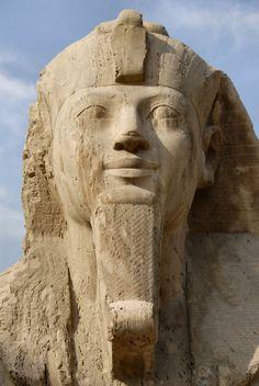 Face of little sphinx, Memphis, Egypt.