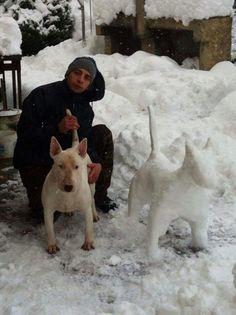 #Bull #terrier winter art
