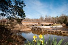 Watson Mill Bridge State Park is a gorgeous trail park east of the city. It's showcase piece is the longest covered bridge in the state,...
