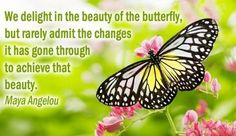 beauty-of-butterfly-quote.jpg