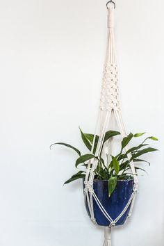 Large Macrame Plant Hanger > Natural Ecru Recycled Cotton Cord