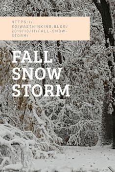 Winter Storm, Winter Pictures, Storms, Creative Writing, How To Dry Basil, Photographs, Snow, Fall, Autumn