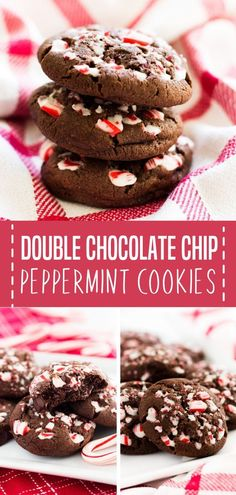 These Double Chocolate Chip Peppermint Cookies are the perfect sweet treats for your holiday parties or Christmas cookie exchange! They are packed with candy cane bits and chocolate chips. Save this snack or dessert recipe for later! New Year's Desserts, Winter Desserts, Delicious Desserts, Party Desserts, Christmas Desserts, Christmas Baking, Christmas Recipes, Holiday Recipes, Chocolate Chip Shortbread Cookies