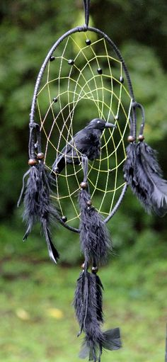 "Raven Magic Dream Catcher - 12"" ring links it to our will and intention. The raven shows us how to go into the dark of our inner self and bring out the light of our true self"