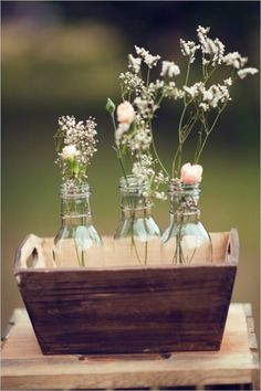charming roses in jars