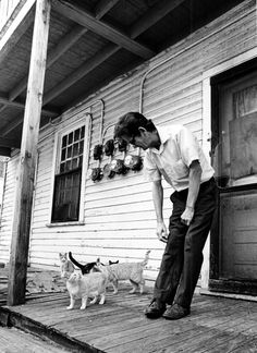 April 3, 1980 - Wayne Winntage and his menagerie of cats live in Cabbagetown.