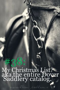 Equestrian Problem #38     Less than a month until Christmas! What are some equestrian related things you all want for Christmas? (Or Hanukkah..)