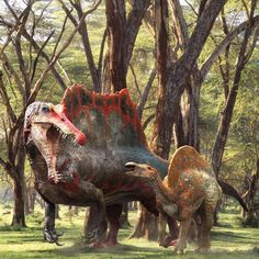 Spinosaurus and Ouranosaurus during the early Cretaceous of North Africa. Dinosaur Photo, Dinosaur Pictures, Jurassic World Dinosaurs, Jurassic Park World, Spinosaurus, Prehistoric World, Prehistoric Creatures, Dinosaur Fossils, Dinosaur Art