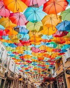 Let it rain Umbrella Street, Rain Umbrella, Digital Backgrounds, Birthday Wishes, Happy Birthday, Anniversary Cards, Installation Art, Instagram, Beautiful Things