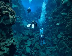 """Check out new work on my @Behance portfolio: """"Diving Silfra Canyon, Thingvallir, Iceland 02-2016"""" http://be.net/gallery/34654753/Diving-Silfra-Canyon-Thingvallir-Iceland-02-2016"""