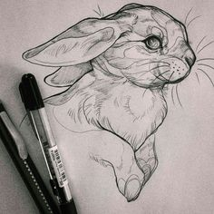 Exciting Learn To Draw Animals Ideas. Exquisite Learn To Draw Animals Ideas. Animal Sketches, Art Drawings Sketches, Animal Drawings, Cute Drawings, Pencil Art Drawings, Arte Sketchbook, Animal Tattoos, Art Inspo, Amazing Art