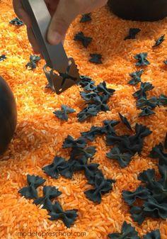 Bat Sensory Bin Halloween black bat fine motor sensory bin for preschoolers and toddlers from Modern Preschool!Halloween black bat fine motor sensory bin for preschoolers and toddlers from Modern Preschool! Sensory Table, Sensory Bins, Sensory Activities, Toddler Activities, Sensory Play, Fall Sensory Bin, Toddler Crafts, Preschool Crafts, Crafts For Kids