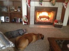 enjoying the fire Bruiser and sister Katy