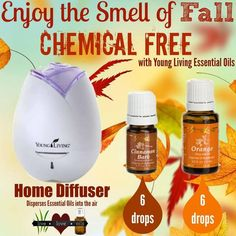 Young Living Essential Oils: Diffuser | For more info or to order Young Living, come visit: www.thesavvyoiler.com