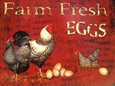 Country Kitchen Metal Sign Red Farm Fresh Egg Metal Sign