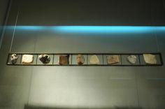 Arte del RiFF Track Lighting, Flat Screen, Ceiling Lights, Home Decor, Homemade Home Decor, Flat Screen Display, Ceiling Light Fixtures, Ceiling Lamp, Outdoor Ceiling Lights
