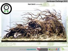 Hardscape Challenge 2015 - Die Ergebnisse (Galerie) - my-fish Aquascaping, Aquarium Aquascape, Aquarium Landscape, Nature Aquarium, Planted Aquarium, Tropical Freshwater Fish, Freshwater Aquarium, Tropical Fish, Aquarium Design