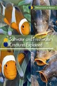 Saltwater and Freshwater Creatures Explained Salt And Water, Fresh Water, Book Outline, Water Systems, This Book, Survival, Environment, Knowledge, Creatures