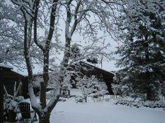 Peterborough, Canada: A winter wonderland