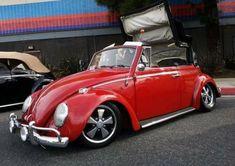 Volkswagen, Vw T1, Beetle Bug, Vw Beetles, Vw Racing, Lo Rider, Old Bug, Vw Baja Bug, Vw Beetle Convertible