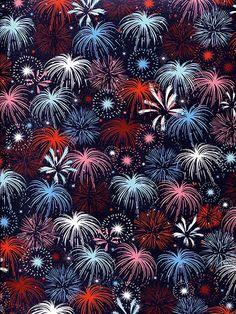 Fireworks / 2351