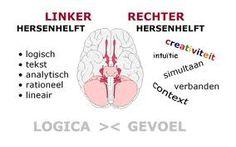 Linker rechter hersenhelft. Tips om het hoogevoelige kinderen makkelijker te maken.