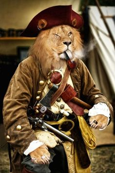 Lion Pirate