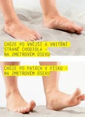 cvičení 6