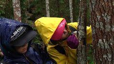 lapset tutkivat lahoa puunrunkoa sateisessa metsässä