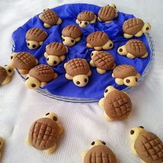 All Time Easy Cake : Turtle Cookies, Cookies Et Biscuits, Cake Cookies, Cute Food, Yummy Food, Turtle Cookies, Cookie Designs, Food Humor, Cookie Recipes, Dessert Recipes
