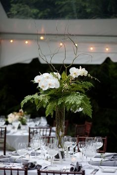 centerpieces were simple, but striking, lush ferns and strikingly elegant phalaenopsis orchids.: