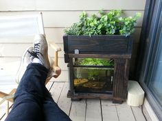 Fish tank aquaponics system check out my personal for Balcony aquaponics