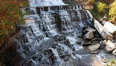 51 tickets issued to off-trail explorers at Albion Falls since July